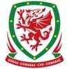 Wales EM Drakt